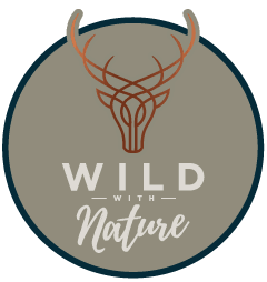Wild With Nature Glamping